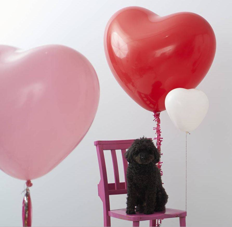 старинный открытка с воздушными шарами в виде сердца подробно мебельных рольставнях